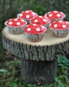 red mushroom cupcakes fairy treasure hunt birthday party.
