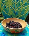 vintage metal chair boysenberries