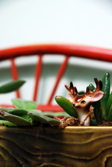 mini deer figurine in vintage planter succulents california pixie