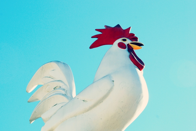 chinese chicken chinatown new year statue fiberglass rooster