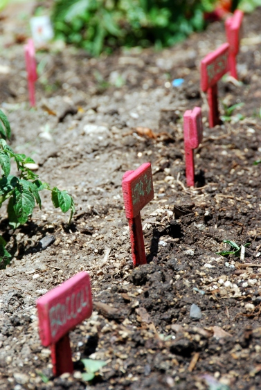 DIY garden stakes gardening blog ideas