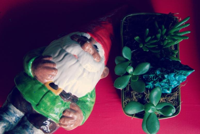 ceramic gnome jade plant