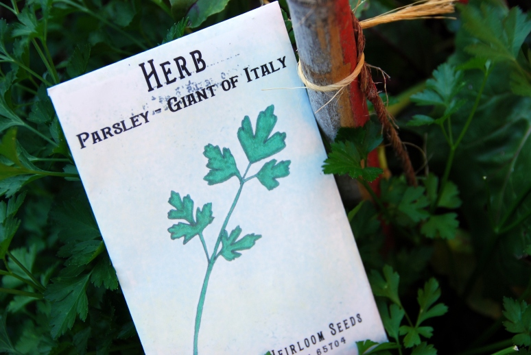 grow your own greens parsley heirlooms seeds baker creek